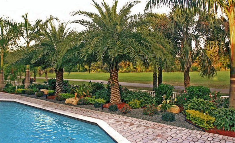 commercial-landscaping-818x50